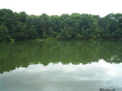 Een foto met water en bomen op een rustig plekje in Belgie